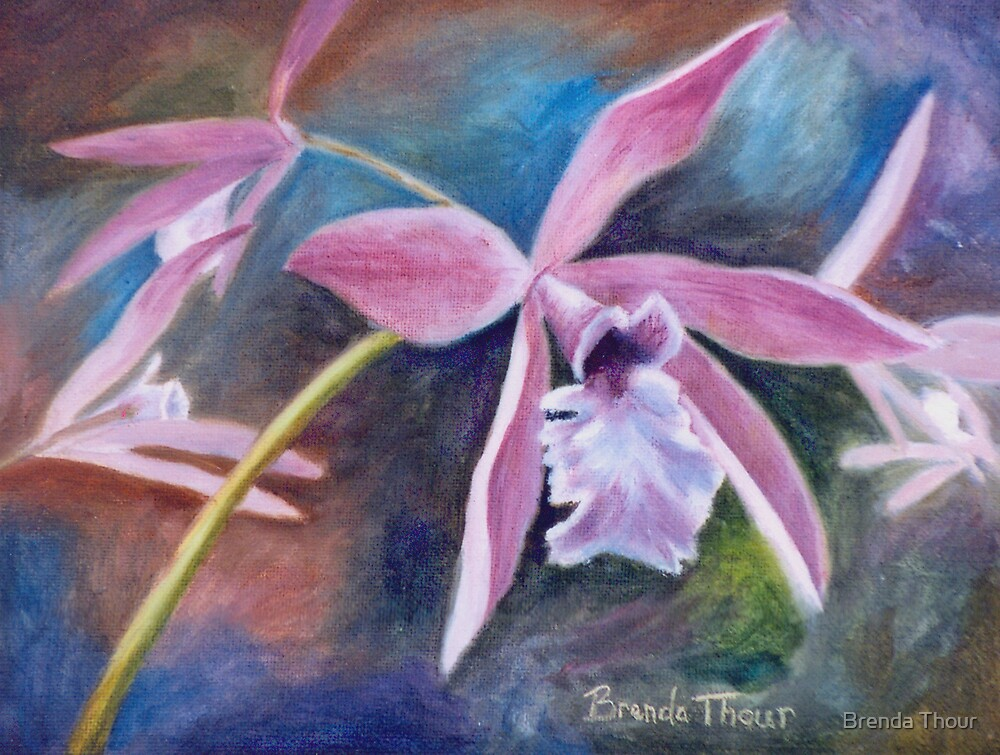Sweet Orchid by Brenda Thour