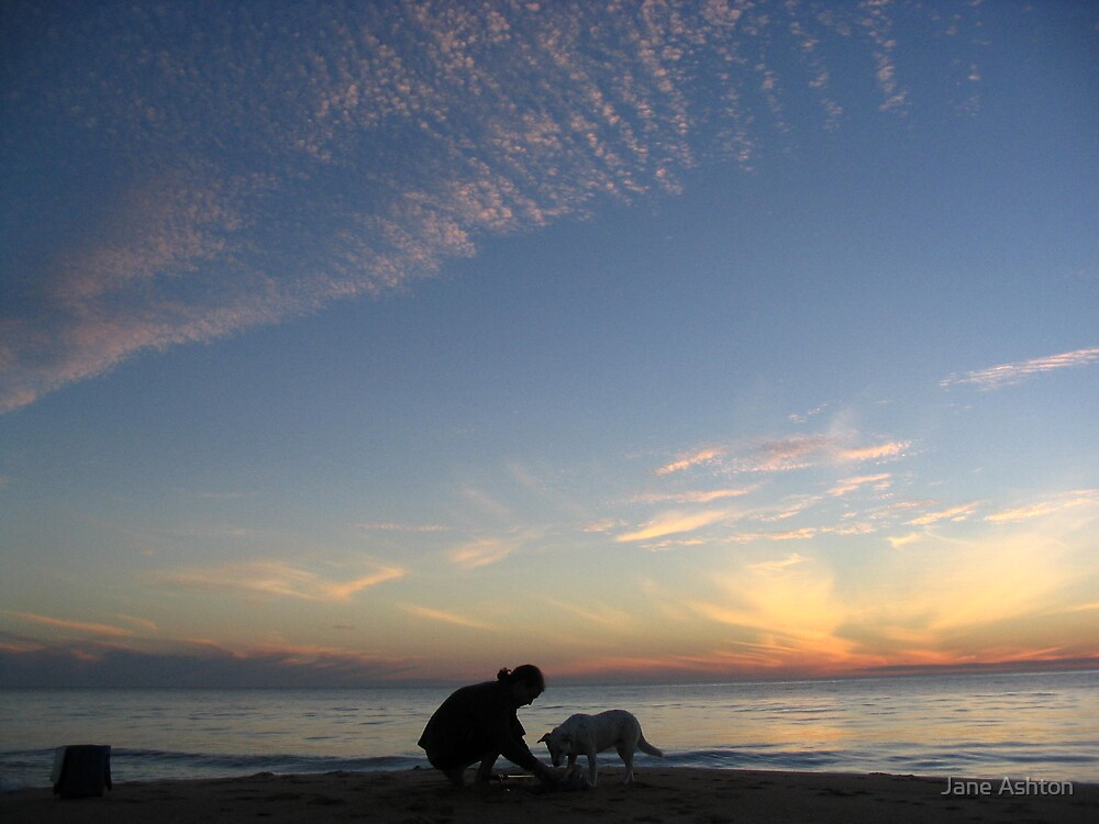 mans best friend, beachside by Jane Ashton