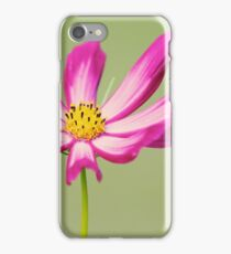 Rejoicing iPhone Case/Skin