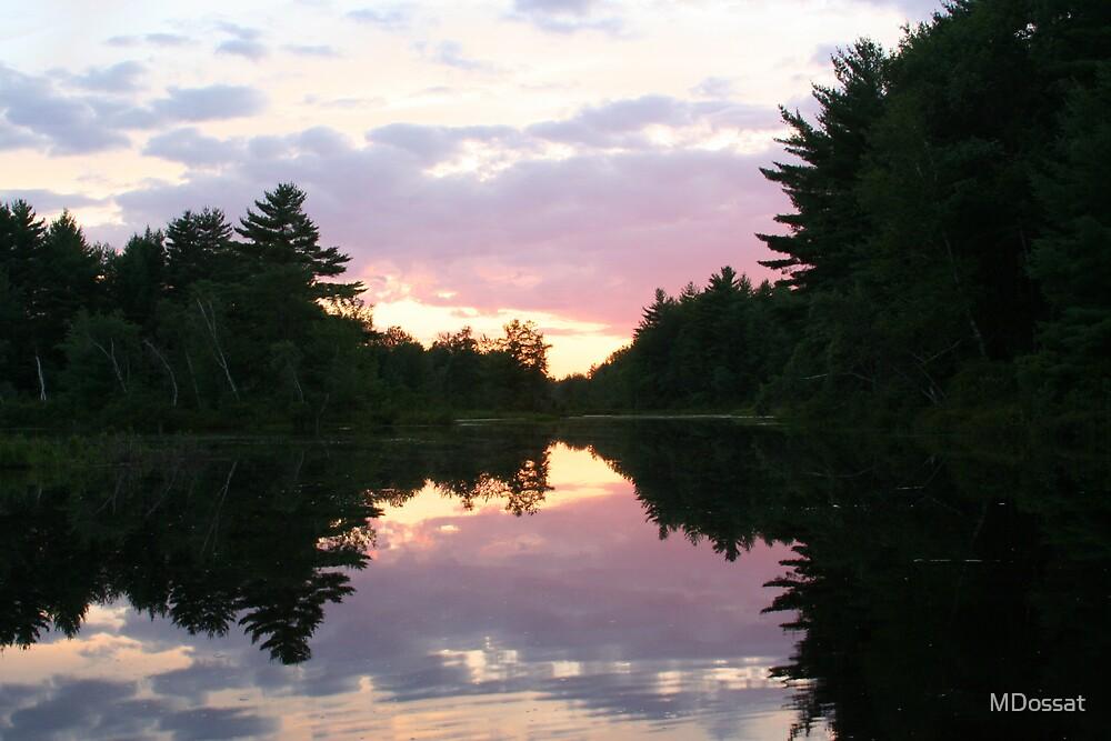 Beaver Dam Sunset II by MDossat