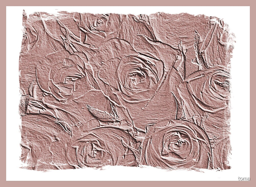 a bed of roses by toma