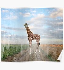 Giraffe in the Grassland Savanna All Over Print T-shirt Poster