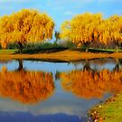 On Golden Pond by minnielee