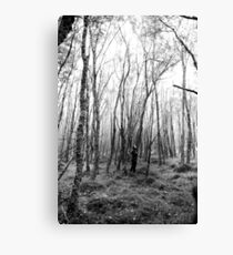Perdida en el bosque Canvas Print