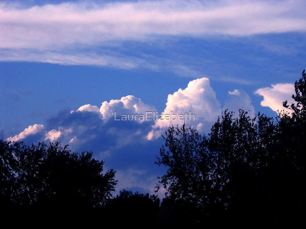 Storms Coming by LauraElizabeth