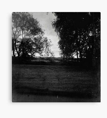 Rural Field Scene Canvas Print