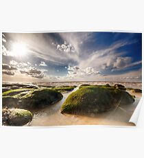 Beautiful seaweed rock outcrops on Norfolk coast Poster