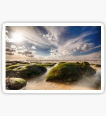 Beautiful seaweed rock outcrops on Norfolk coast Sticker
