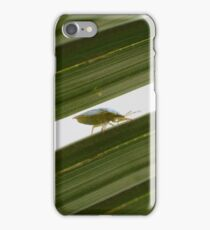 It's a bug's life iPhone Case/Skin