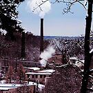 factory country winter card lake house  tree by Antanas