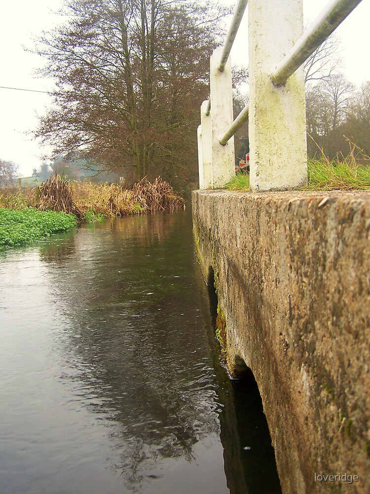 west meon stream by loveridge