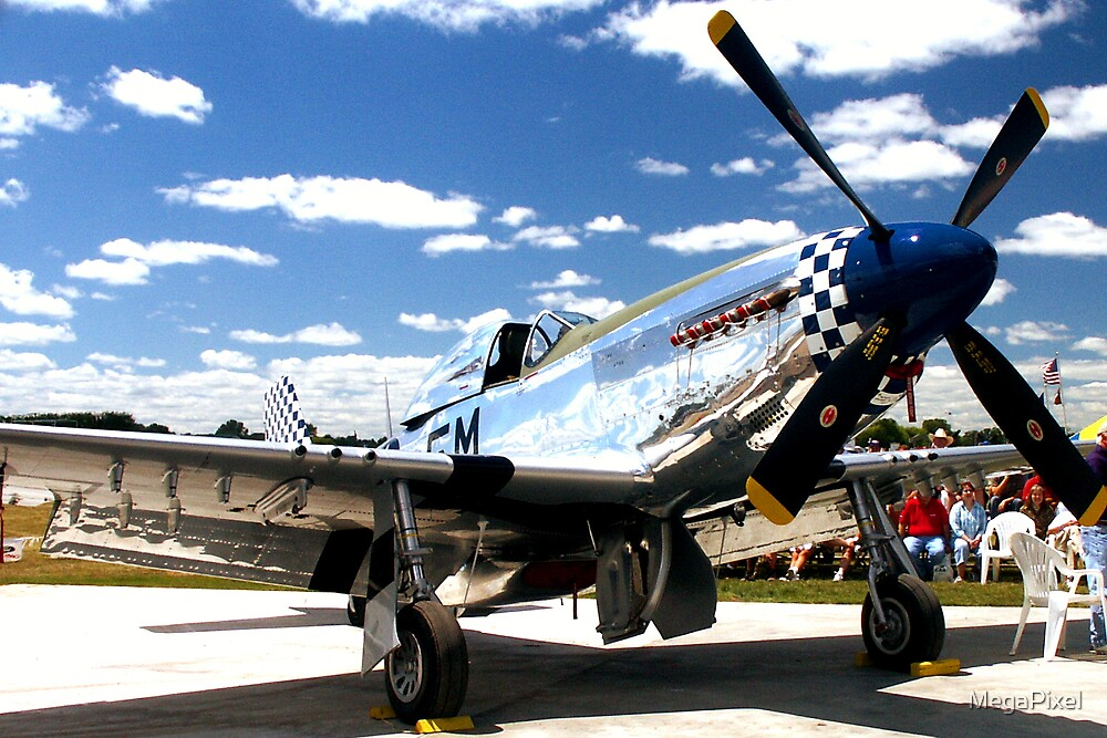 Silver Beauty at Osh Kosh 2004 by MegaPixel
