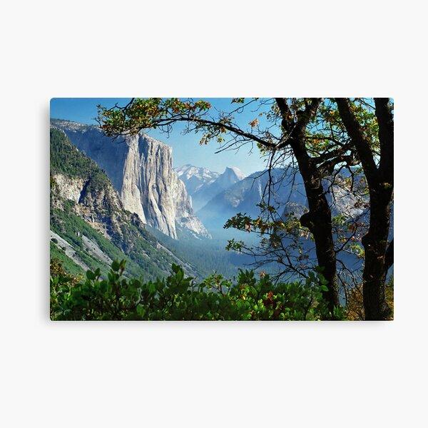 Día de Yosemite Lienzo