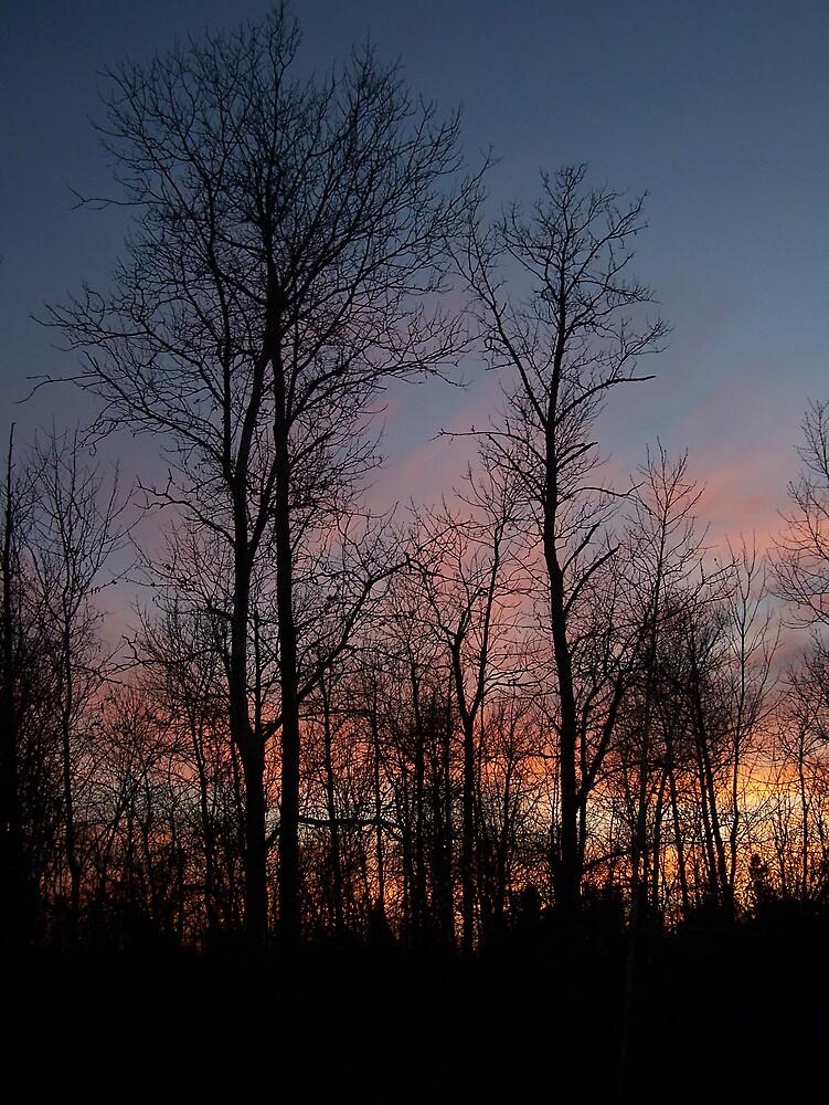 Winter Sunset by Gene Cyr