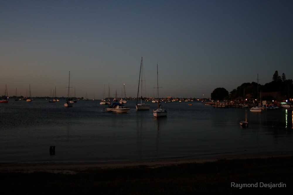 Morning in Sarasota by Raymond Desjardin