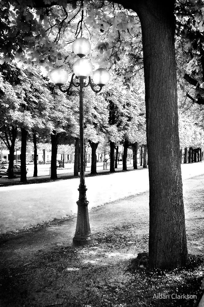 Paris by Aidan Clarkson