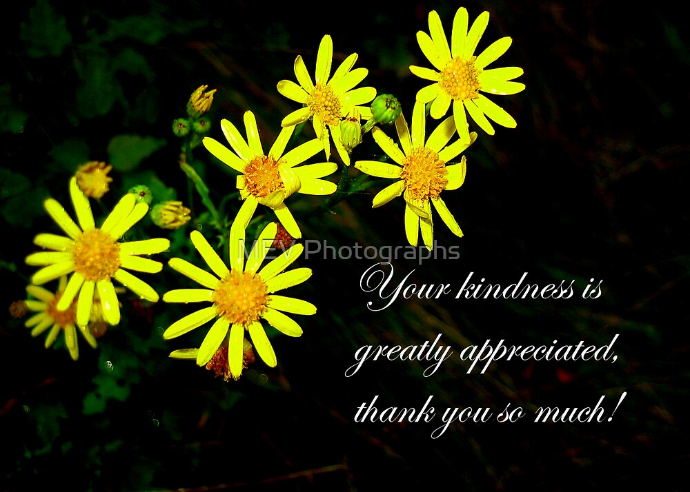 Thank you by MEV Photographs
