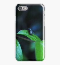 Fly on a Leaf iPhone Case/Skin