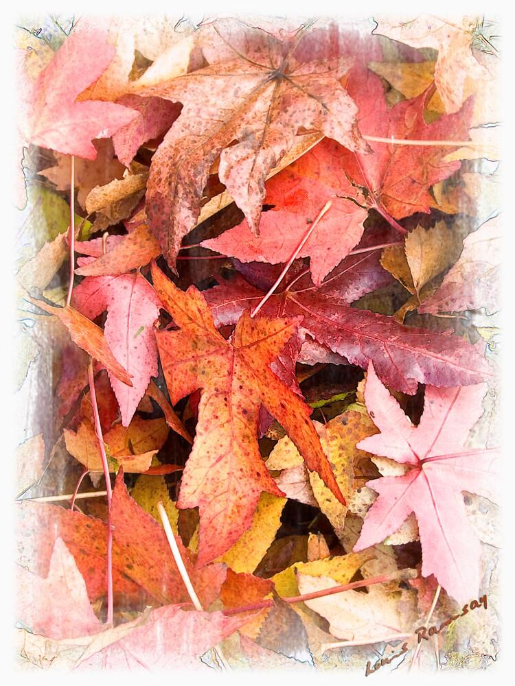 Autumn Leafs by PhotoLouis
