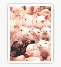 Pigs Sticker