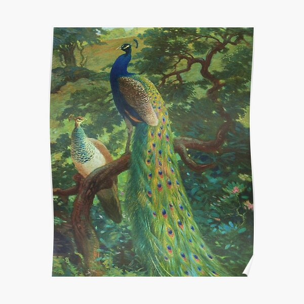 Peacock Chinoiserie Poster