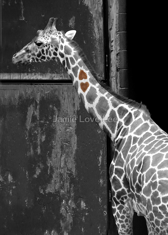 Heart to Heart by Jamie Lee