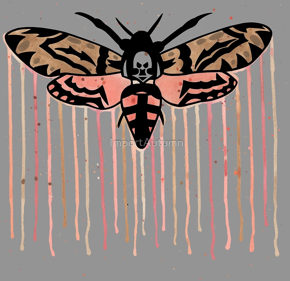Death's-head hawkmoth by ImportAutumn