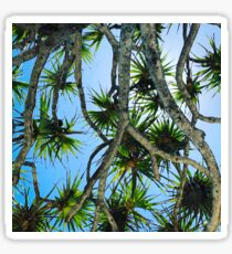 Pandanus Sticker