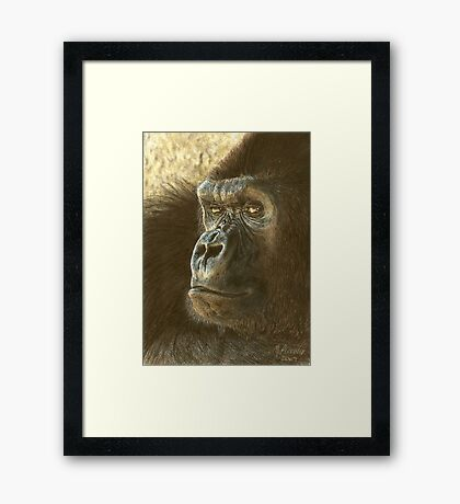Gorilla in color pencil Framed Print