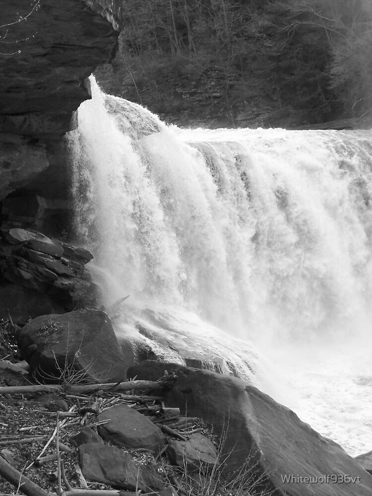 Cumberland Falls by Whitewolf936vt