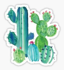 Helle farbige Kakteen Sticker