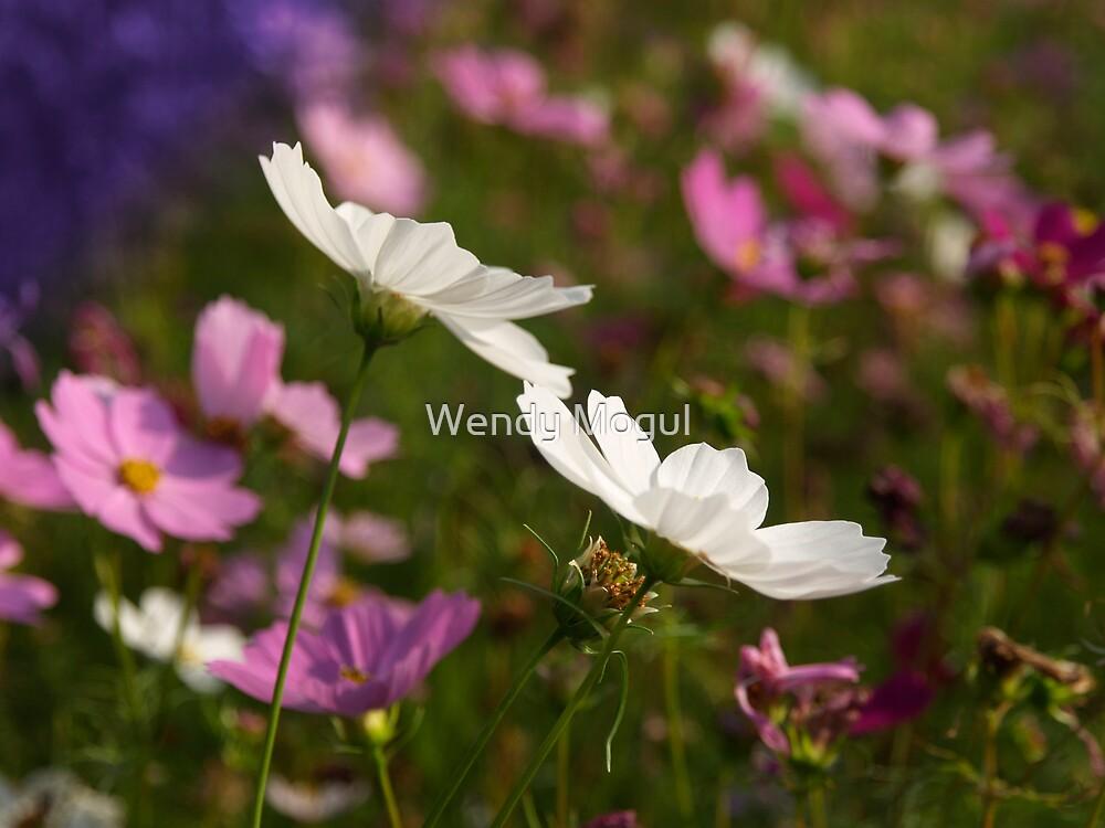 Wildflowers by Wendy Mogul