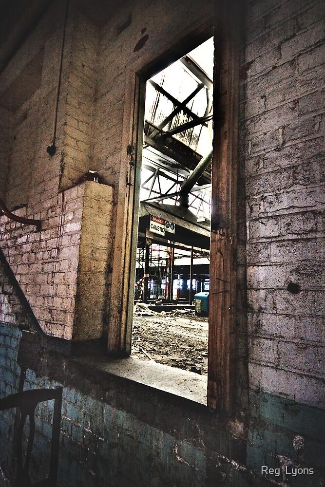 The Caustic Doorway by Reg  Lyons