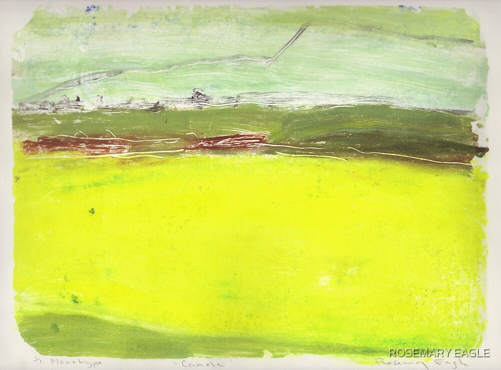 Canola Crop  by ROSEMARY EAGLE