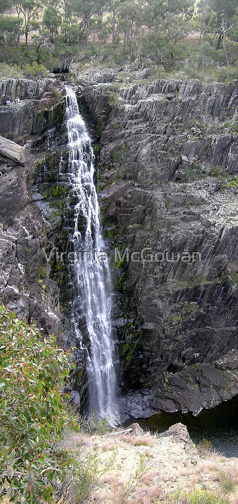 Waterfall Walcha # 2       Apsley Falls by Virginia McGowan