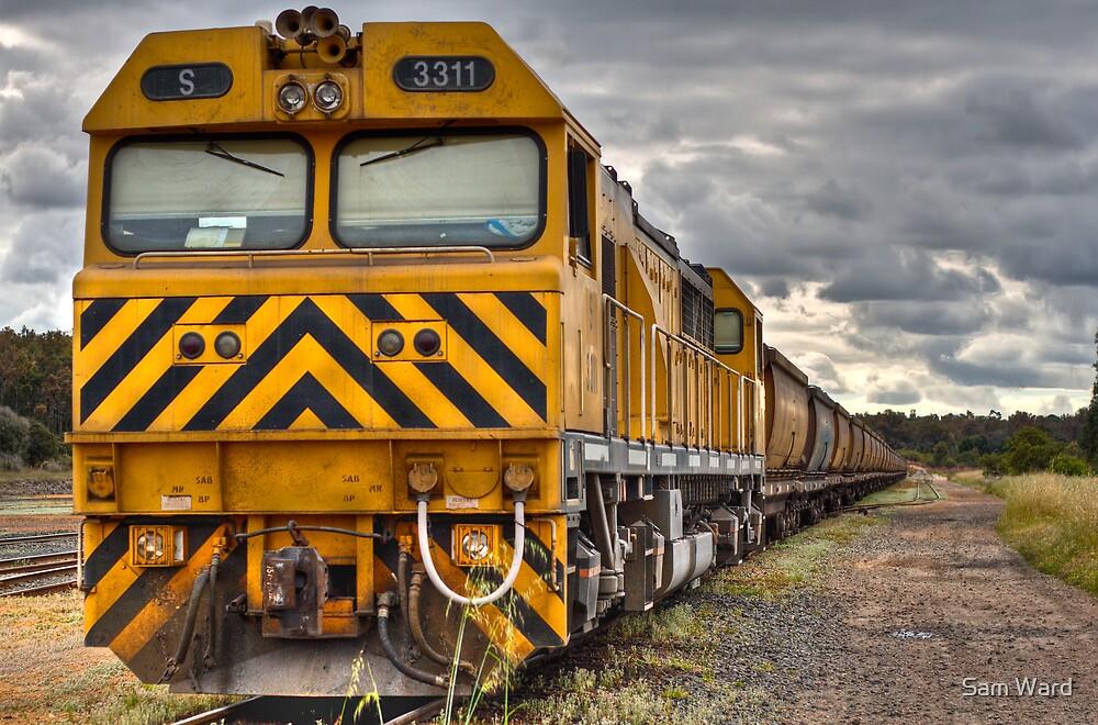 Collie Coal Train by Sam Ward