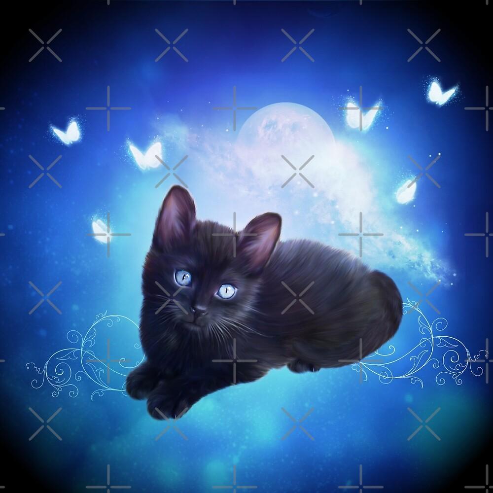 Cute little black kitten  by nicky2342