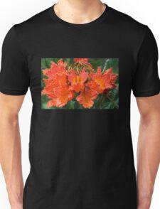 African Tulip Tree Flowers 2 Unisex T-Shirt