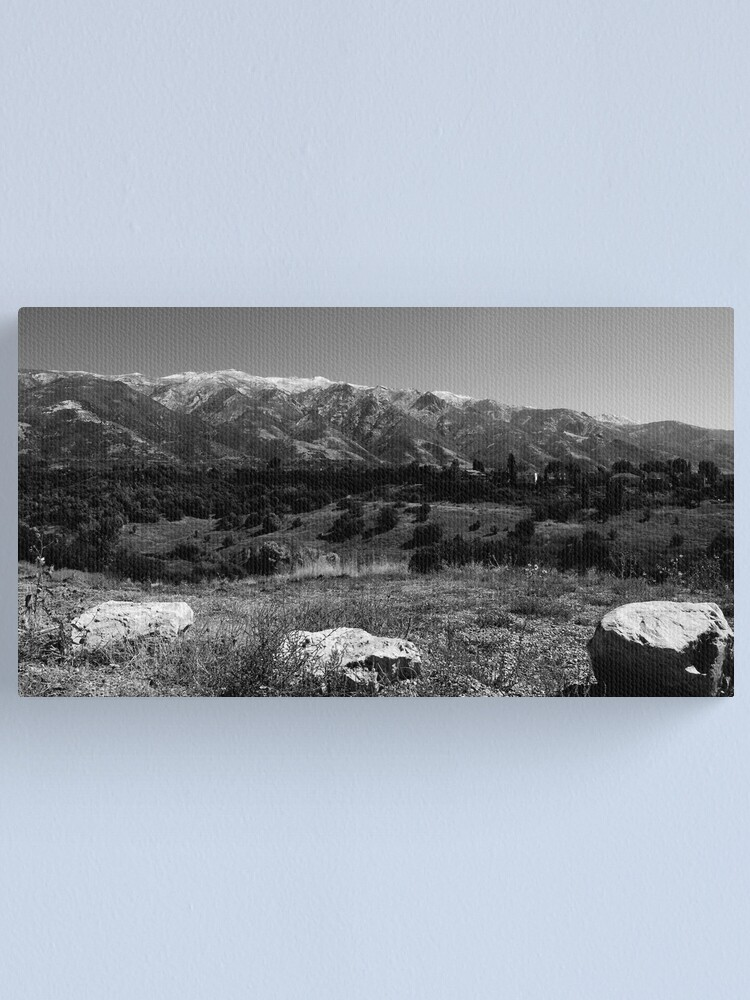 Alternate view of Life Valley Canvas Print