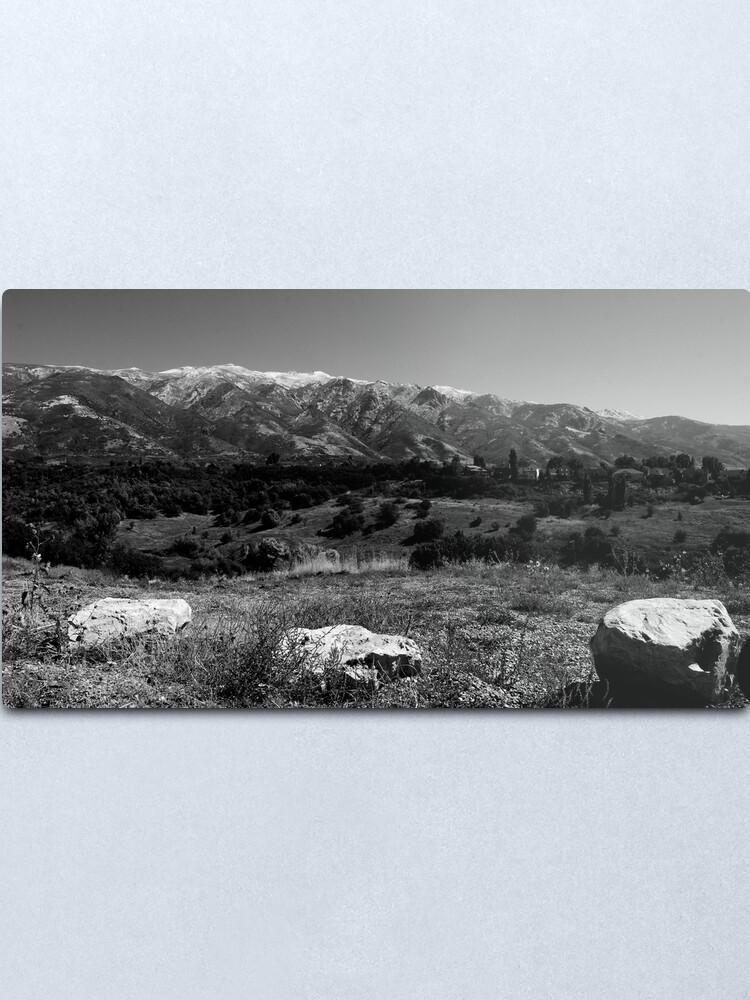 Alternate view of Life Valley Metal Print