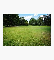 Nature background, park with meadow Photographic Print