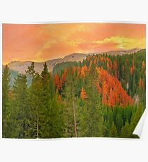 Autumn evening in Bucegi Mountains Poster