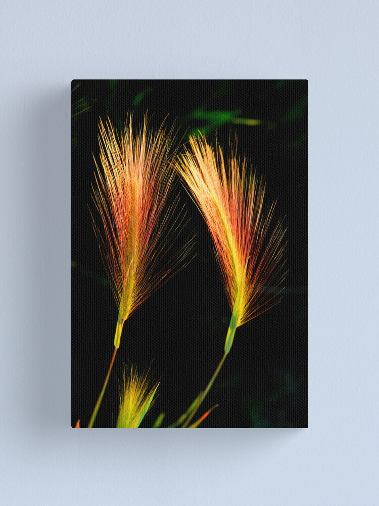 Alternate view of Wetland Paintbrush Canvas Print
