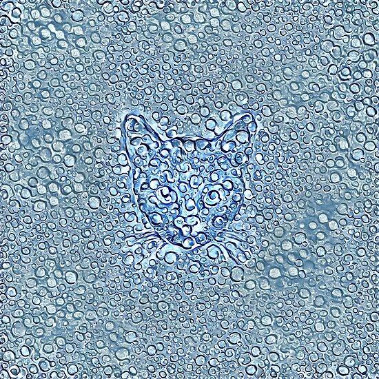 Maritime droplets cat