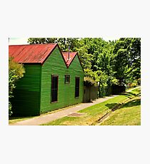 The Green House Affect !! Photographic Print