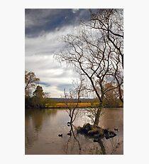 Richmond River Scene Photographic Print