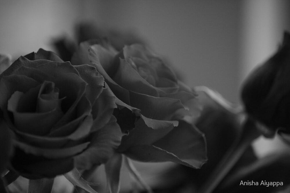 thorn by Anisha Aiyappa