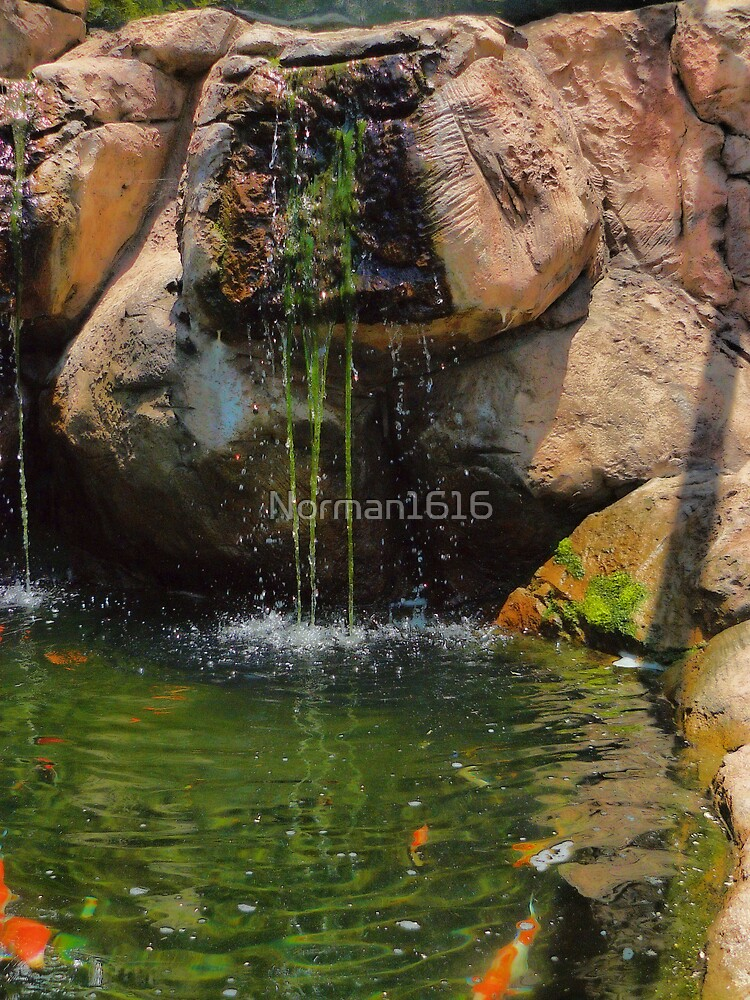 The Pond by Norman1616