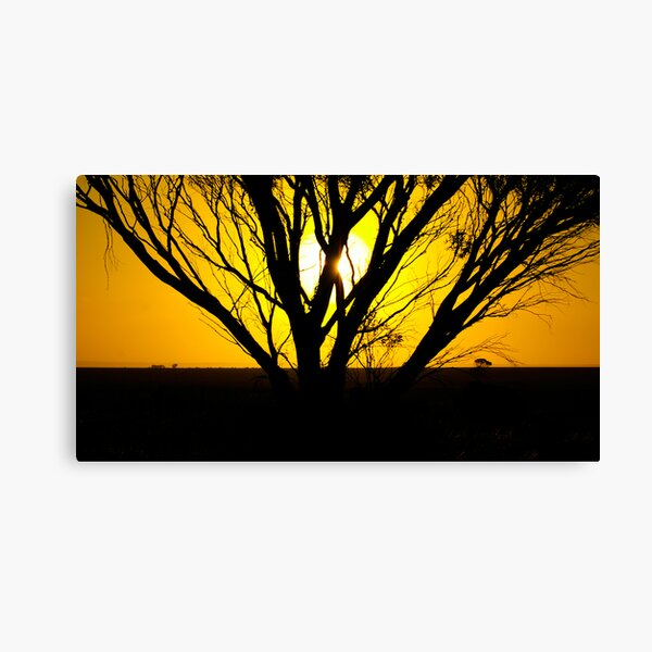 Sunset; Port Wakefield, South Australia Canvas Print