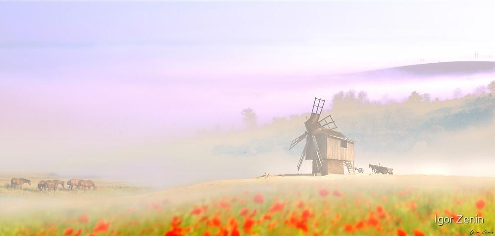 Old Mill by Igor Zenin